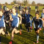 Secondary Cross Country Results