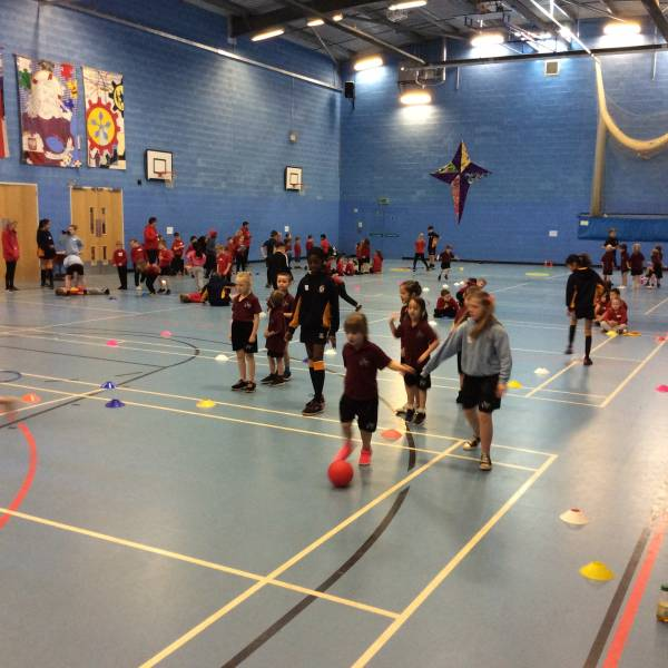 Term 4 BGN Cluster Year 1 Multi-skills
